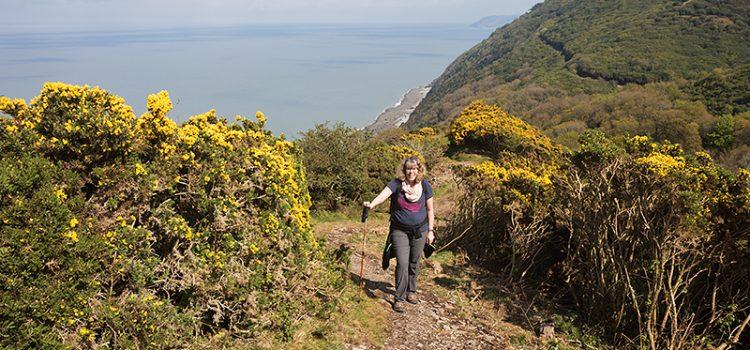 Hiking UK southwest coast path: Blue Anchor Bay to Lynmouth