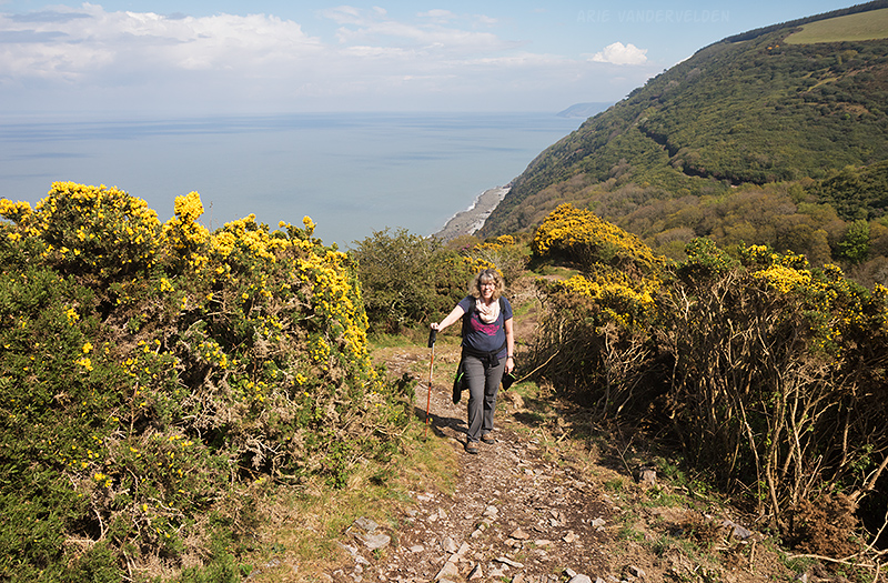 Southwest coast path, near the Somerset-Devon border. The trail is also visible on the hillside in the distance.