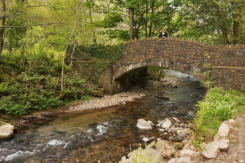 River Heddon.