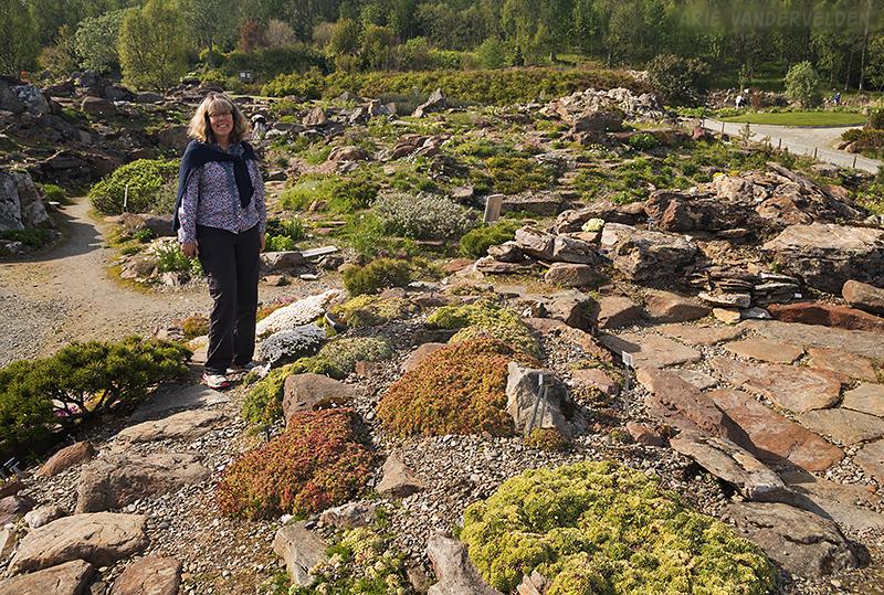 Tromsø botanical gardens.