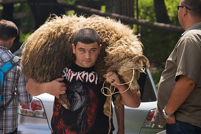 A young man has bought a sheep from a shepherd, and is taking it to be slaughtered.