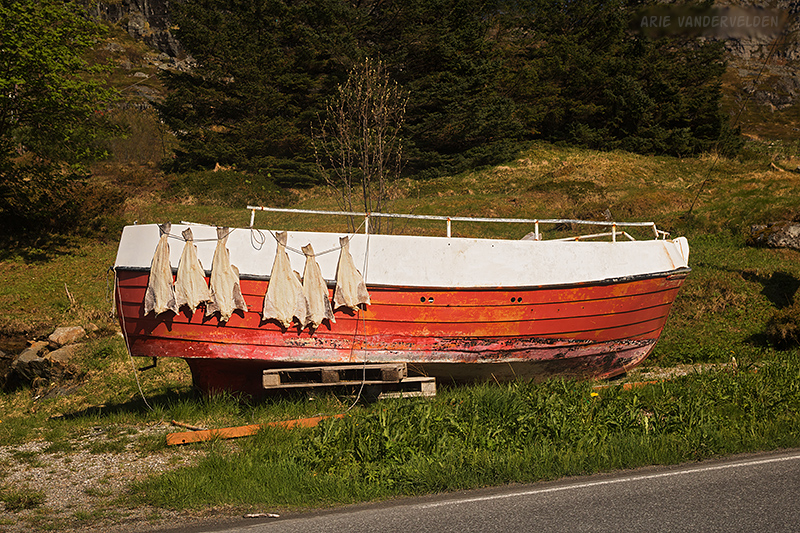 Drying cod on an old dory.