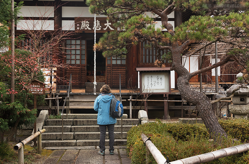 Diana at Kozenji Temple.