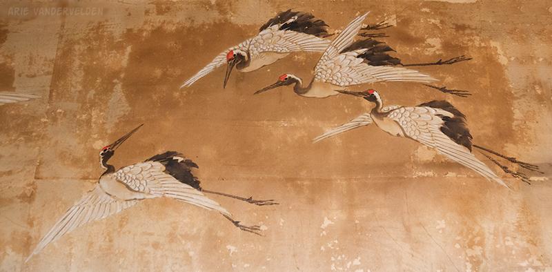 Cranes, Joshoji Temple.