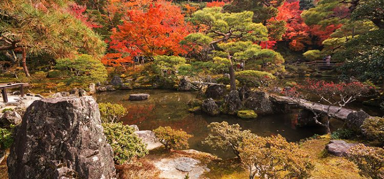 Photo gallery: Kyoto's temples in fall