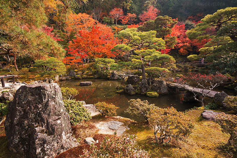 Gardens, Pond, Ginkakuji.