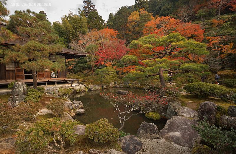 Pond, Ginkakuji.