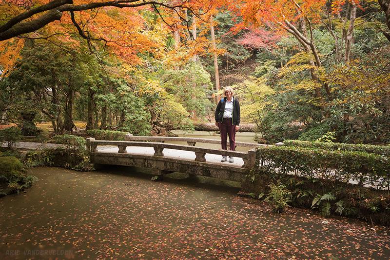 Honenin temple grounds.