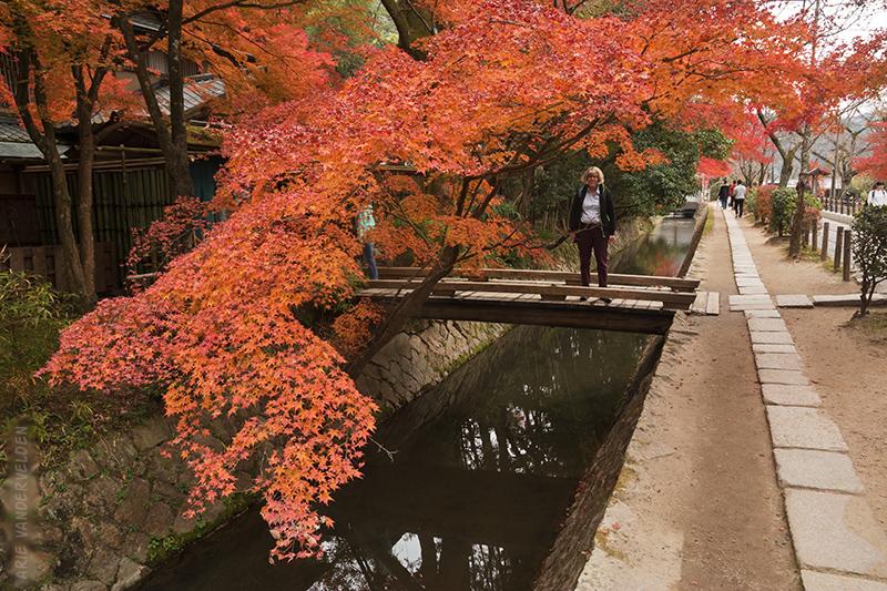 Philosopher's path, Kyoto.