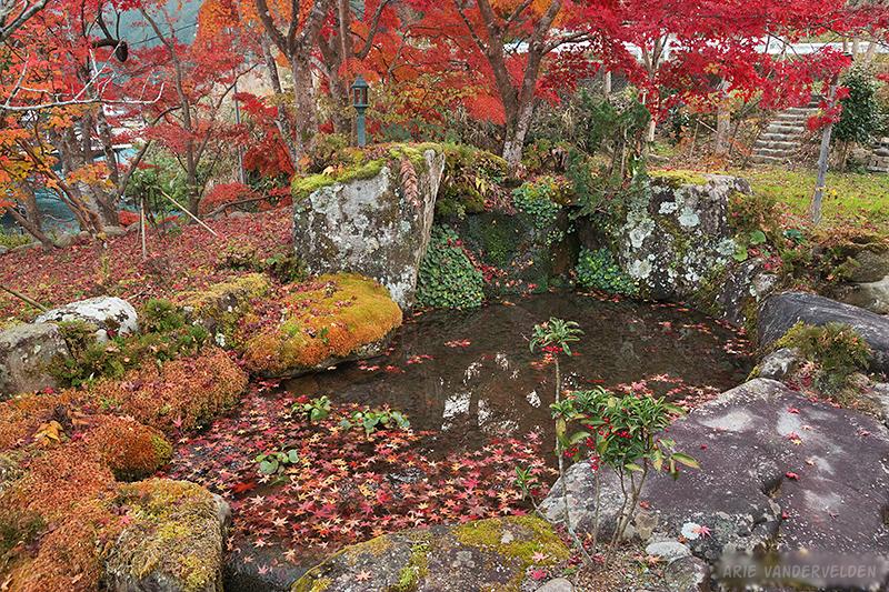 Garden at Happiness Chikatsuyu.