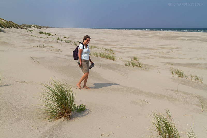 Crossing the dunes to the beach.
