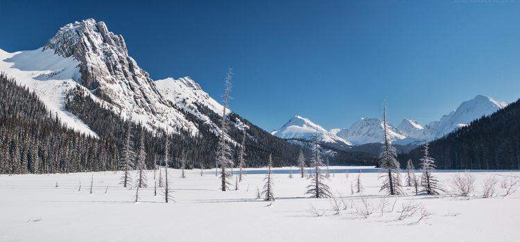 Photo gallery: Burstall Pass
