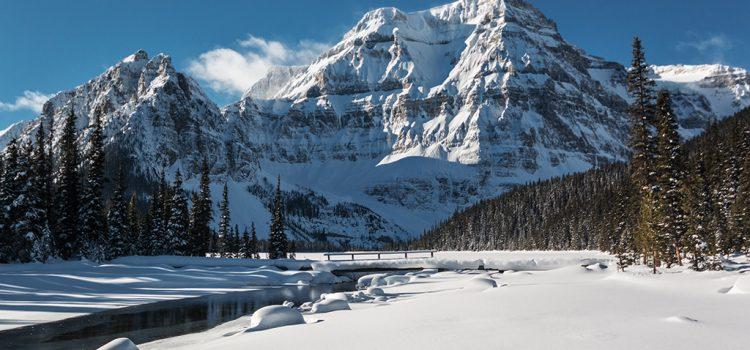 Photostream – Winter 2020-2021